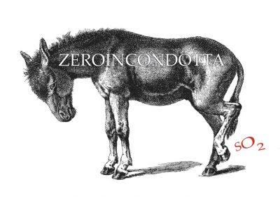 Zeroincondotta