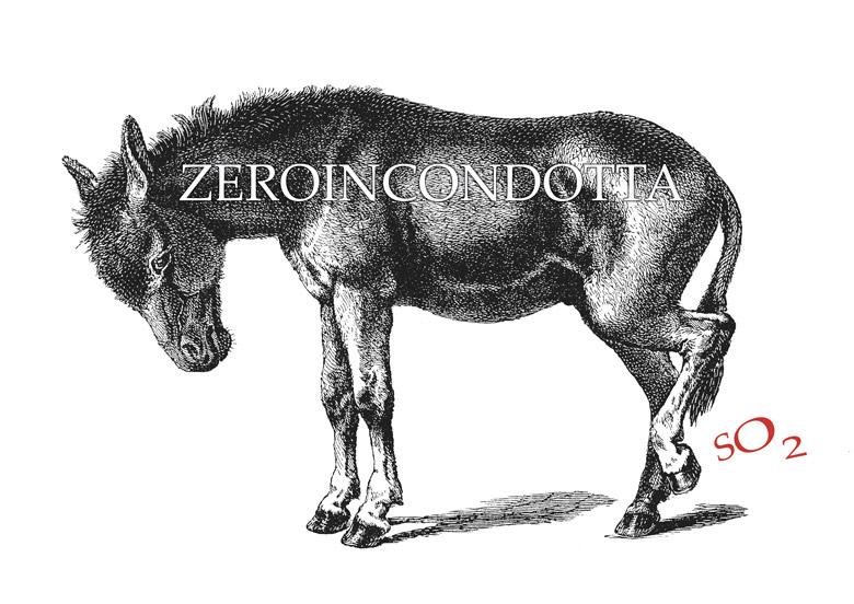 zeroincondotta (3)